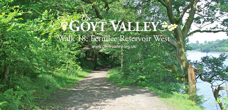 Fernilee west walk video