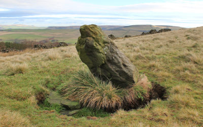 Foxlow Edge burial site?