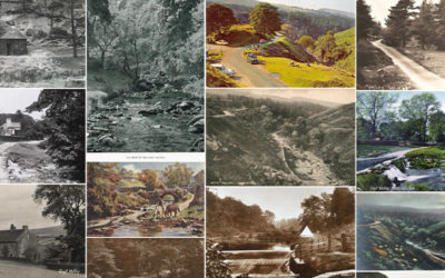 ebay postcard gallery