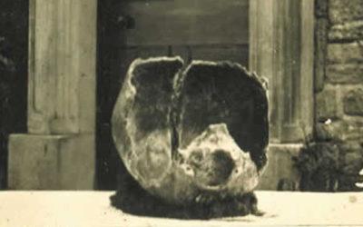 Tunstead Dickie's skull