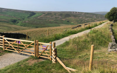 Fencing the valley