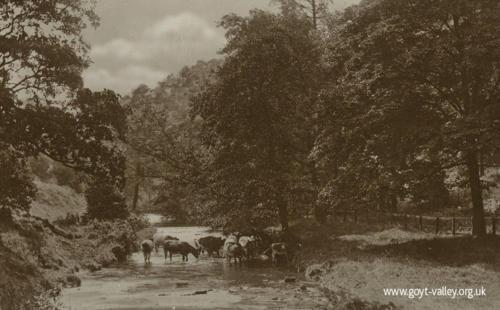 The Goyt at Taxal. c.1915