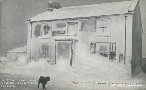 Cat & Fiddle. 1919